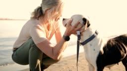 Happy senior woman petting dog on the beach at sunset