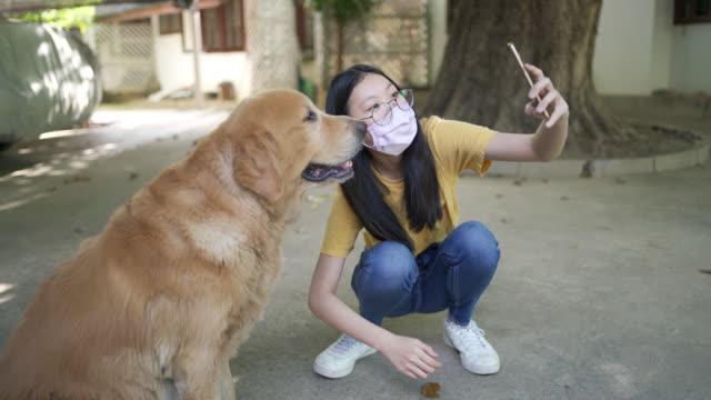 vídeos de stock, filmes e b-roll de happy teenage girls faz selfie wit seu cão em covid-19 novo estilo de vida normal - só uma adolescente menina