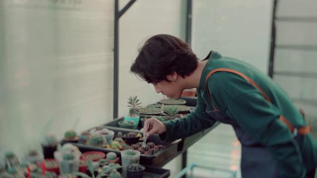 庭で幸せな時間アジアの男。 - ガーデニング点の映像素材/bロール