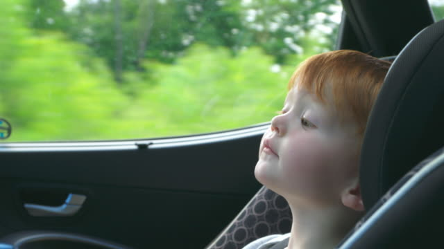 Happy Toddler Boy Secure in Car Seat on Road Trip