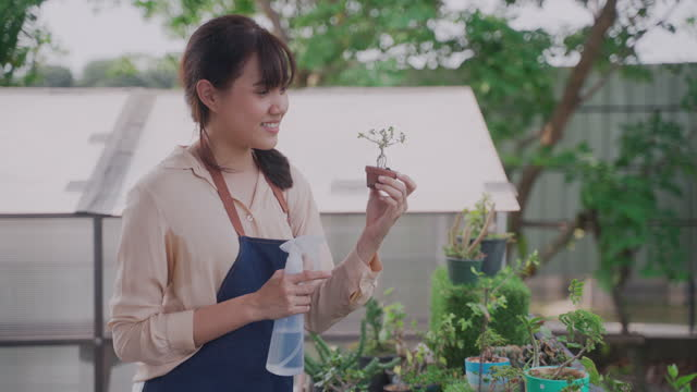 stockvideo's en b-roll-footage met happy woman checking pot plants and repotting plants while watering cactus at her backyard garden - sunny