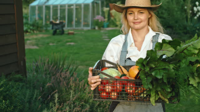 happy woman holding box with fresh organic vegetables - holding stock videos & royalty-free footage