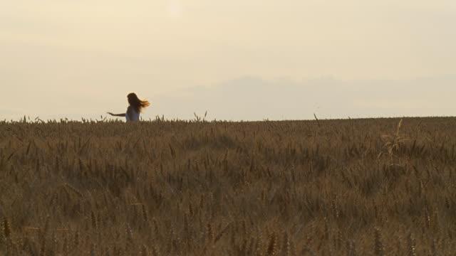hd: glückliche frau in wheat - gärtnerisch gestaltet stock-videos und b-roll-filmmaterial