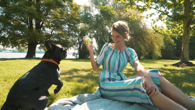 happy woman playing with dog. - simple living stock videos & royalty-free footage