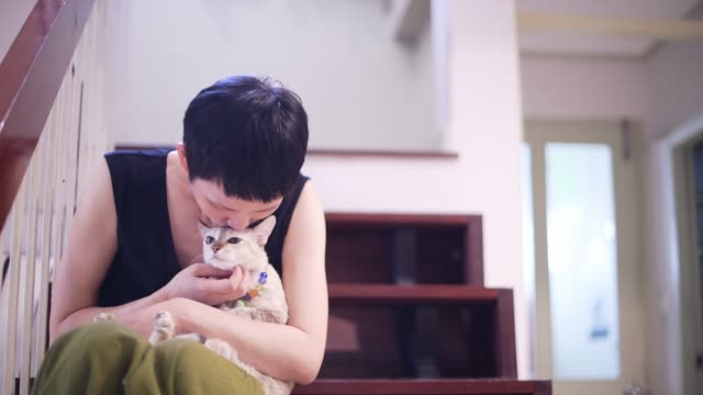happy woman with cat at home. pets and people concept - pampering stock videos & royalty-free footage
