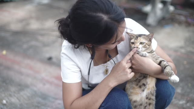 happy woman with cat. - hugging self stock videos & royalty-free footage