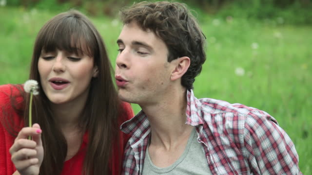 happy young couple blowing dandelion clock - guildford stock videos & royalty-free footage