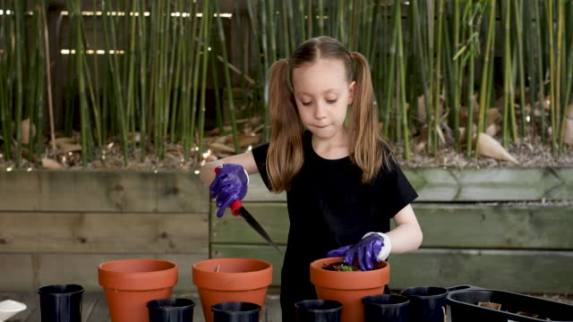 happy young girl gardening - bamboo plant stock videos & royalty-free footage