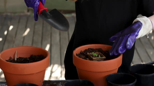 happy young girl gardening - plant pot stock videos & royalty-free footage