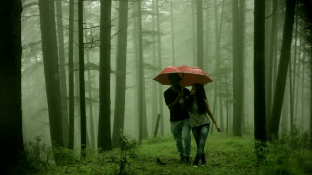 happy young romantic couple walking together under umbrella in nature. - hugging tree stock videos and b-roll footage