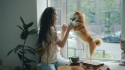 Happy young woman dancing with pet dog sitting on window sill in cafe having fun