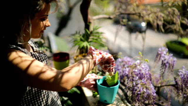 happy young woman is potting flowers on her terrace - giardinaggio video stock e b–roll