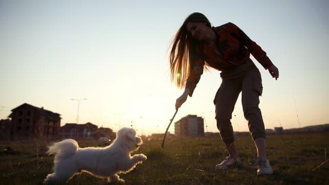 Glückliche junge Frauen lächelnd, während sie mit ihrem maltesischen Hund und Stock spielt