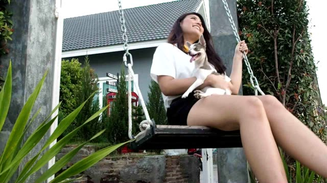 happyness asia woman relaxing with chihuahua dog in swing playground. - perro stock videos & royalty-free footage