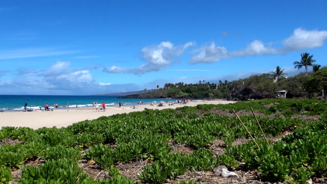 hapuna beach - kohala coast, hawaii - local landmark stock videos and b-roll footage