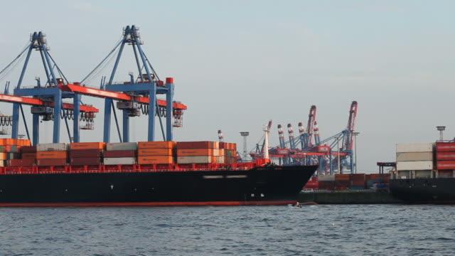 Harbor Hamburg with cranes and cargo ship
