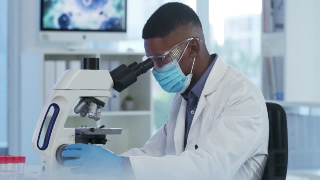 hard at work - medical research stock videos & royalty-free footage