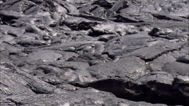 hardened lava completely surrounds a no parking sign. - no parking sign stock videos & royalty-free footage