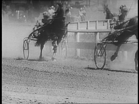 harness horses race the full length of a track / brief montage of spectators / harness horses race the full length of the track / the winning horse... - lunghezza video stock e b–roll