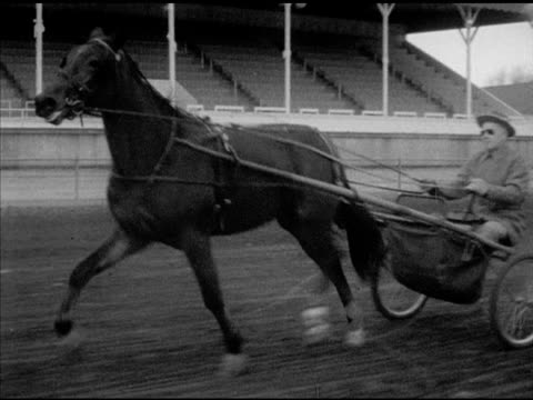 80 Top Harness Racing Video Clips & Footage - Getty Images