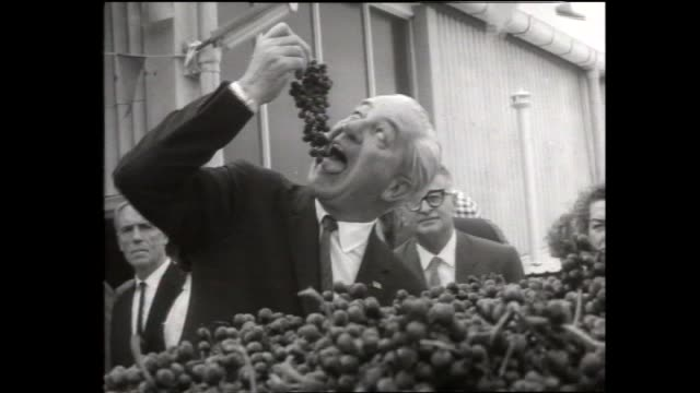 Harold Holt PRIME MINISTER takes bunch of grapes from produce bin and bites from whole bunch 'Roman Emperor' style / Holt watches as grapes tipped...