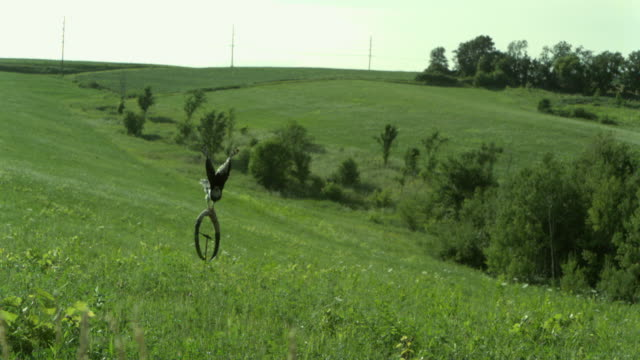 stockvideo's en b-roll-footage met slo mo, cu, harpy eagle (harpia harpyja) flying above meadow, wisconsin, usa, ms - harpij arend