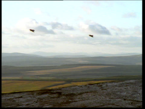 harriers fly past through valley and disappear behind rocky outcrop. - raf stock videos and b-roll footage