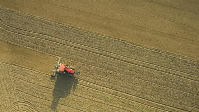 vídeos y material grabado en eventos de stock de indulgencia vista aérea de una esfera con el tractor - oficio agrícola