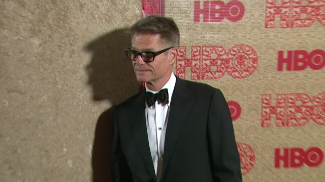 Harry Hamlin at HBO's Post 2014 Golden Globe Awards Party at Circa 55 Restaurant on in Los Angeles California
