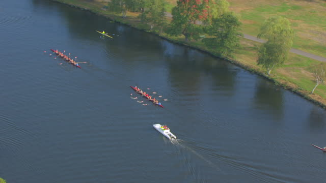 ws zo aerial pov harvard rowing teams practicing on the charles river/ massachusetts, united states - river charles stock videos & royalty-free footage