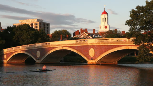 harvard university and the charles river - boston stock videos and b-roll footage
