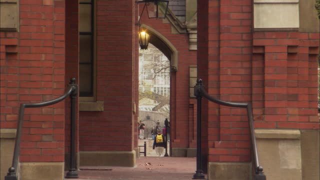 harvard university campus - harvard university stock videos & royalty-free footage
