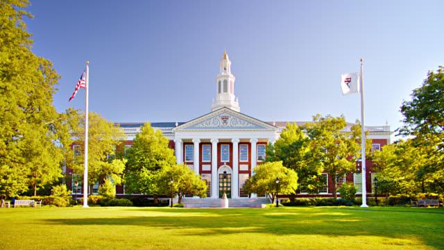 harvard university. office building - harvard university stock videos & royalty-free footage