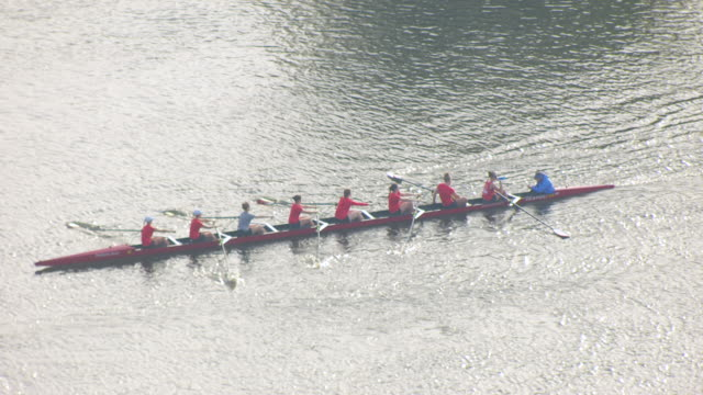 ws ts aerial pov harvard university rowing teams out for morning practice on charles river / massachusetts, united states - harvard university stock videos and b-roll footage