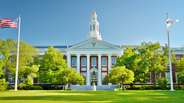 harvard university - harvard university stock videos & royalty-free footage