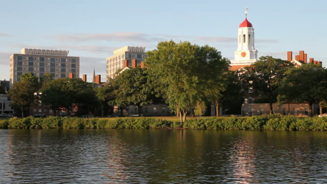 harvard university - harvard university stock videos & royalty-free footage