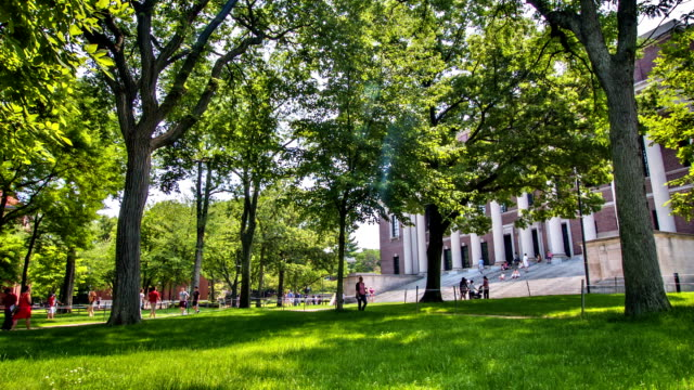 stockvideo's en b-roll-footage met harvard yard and university - harvard university