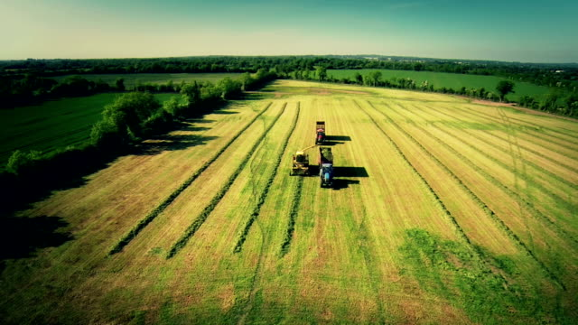 stockvideo's en b-roll-footage met harvest in ireland - acrobaat