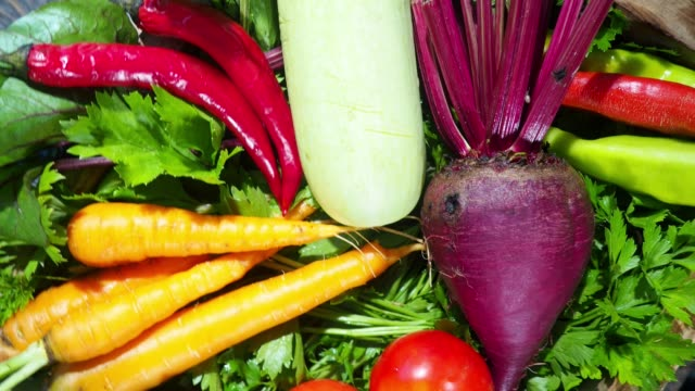 harvest in the crate - beet stock videos & royalty-free footage