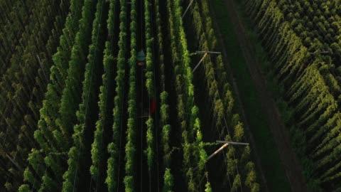 stockvideo's en b-roll-footage met oogstseizoen voor hop - tractor