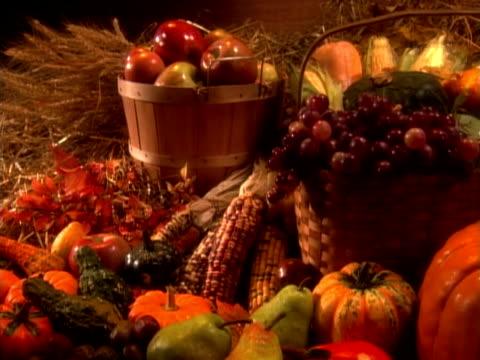 vídeos y material grabado en eventos de stock de harvest - calabaza no comestible