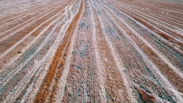 harvested field, aerial view, desaturated - desaturated stock videos & royalty-free footage