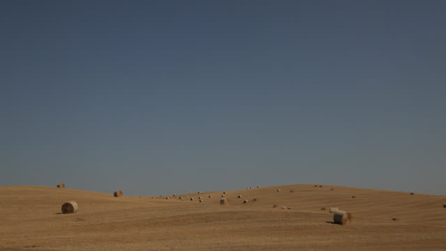 ws pan harvested field with hay bales / tuscany, italy - bale stock videos & royalty-free footage