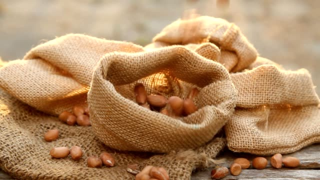 harvested peanut packing in sack - peanut food stock videos & royalty-free footage