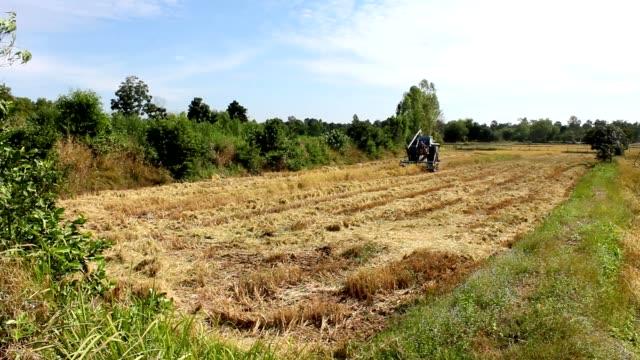 harvester in farm - paglia video stock e b–roll