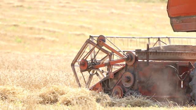 stockvideo's en b-roll-footage met harvester working in a wheat field - volkorentarwe