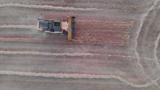 harvester working - 道を譲る点の映像素材/bロール