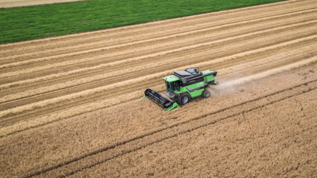 aerial: harvesting a field of wheat - agricultural equipment stock videos and b-roll footage