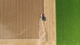 Harvesting a wheat field during a very dry summer season - aerial view