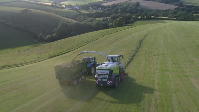 harvesting cut grass - collection stock videos & royalty-free footage